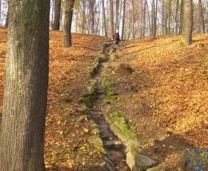 Park w Kamieńcu (2)