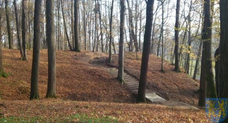 Park w Kamieńcu (3)