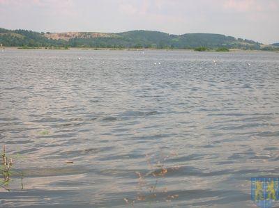 Zbiornik Topola 2