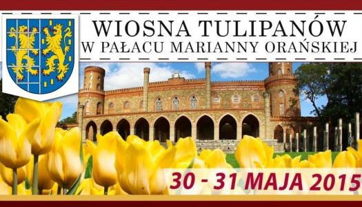 Święto tulipanów po raz pierwszy – spotkajmy się w Kamieńcu!
