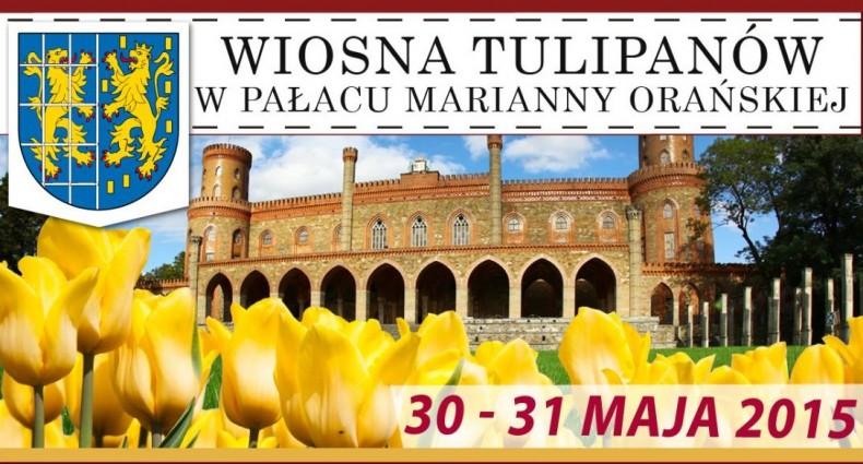 Wiosna Tulipanów_01
