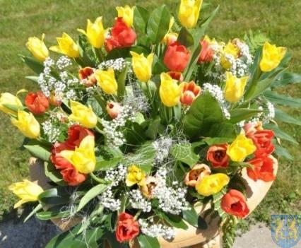 Tulipanowy zawrót głowy część 1 (35)