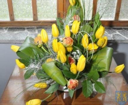 Tulipanowy zawrót głowy część 1 (55)