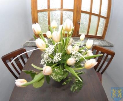 Tulipanowy zawrót głowy część 1 (70)