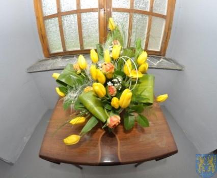 Tulipanowy zawrót głowy część 1 (72)