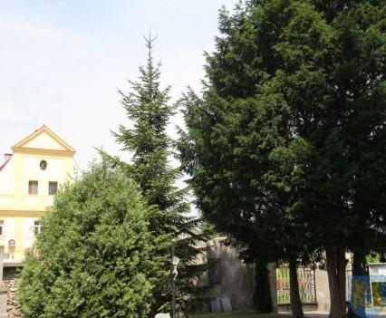 Samorząd wspomaga remonty zabytków (21)