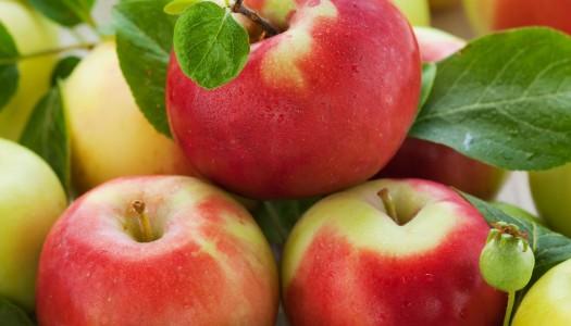 Polskie jabłka dla mieszkańców naszej Gminy