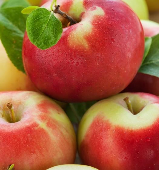 Polskie jabłka dla mieszkańców naszej Gminy_02