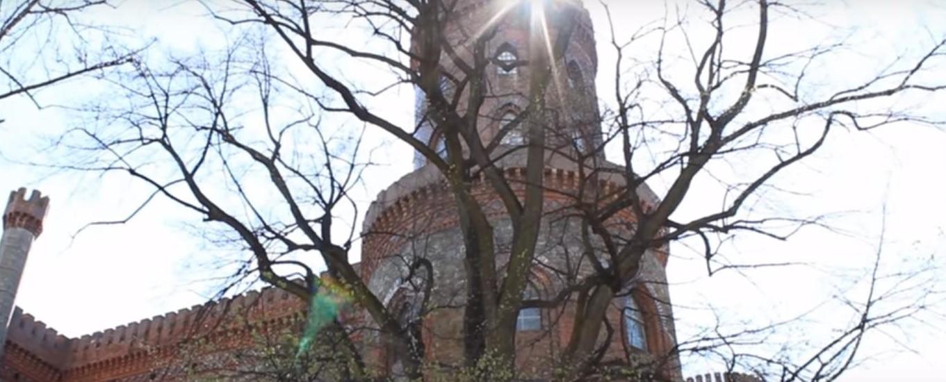 Znajdź wiosnę u stóp Pałacu Księżnej Marianny Orańskiej