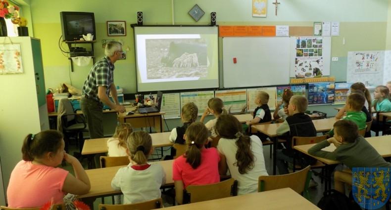 Zwierzęta polskich lasów i łąk (2)