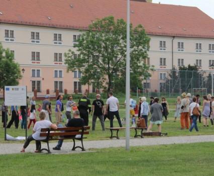 Mezalians w Kamieńcu Ząbkowickim (253)