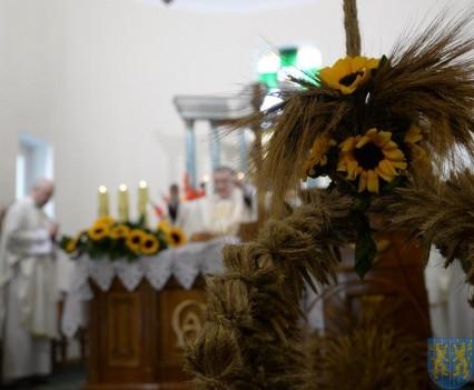 Święto Plonów 2016 tradycyjnie i radośnie (26)