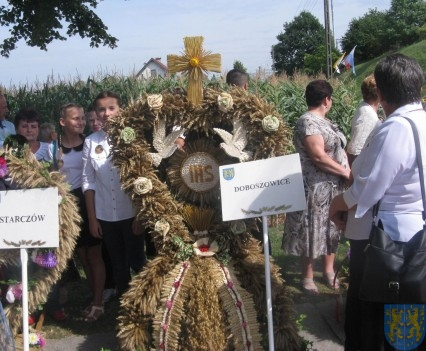 Świętowaliśmy z rolnikami (7)
