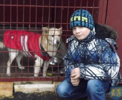 Pomagamy zwierzętom (12)
