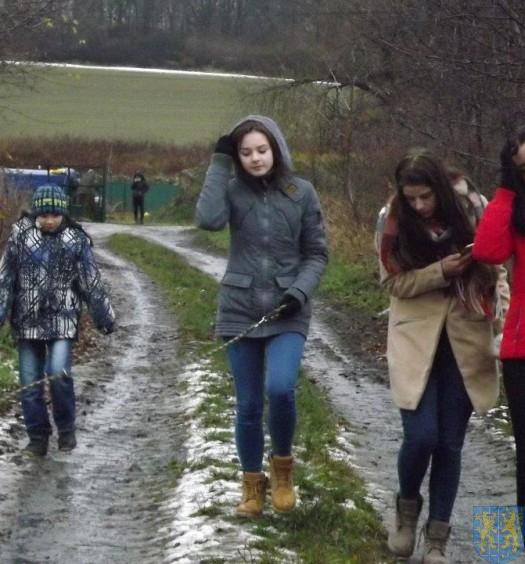 Pomagamy zwierzętom (5)