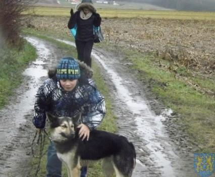 Pomagamy zwierzętom (8)