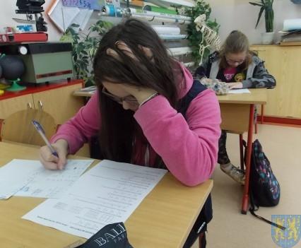 Szkolny Konkurs Matematyczny  (13)