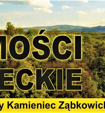 Wiadomości Kamienieckie 1_2017 (9)