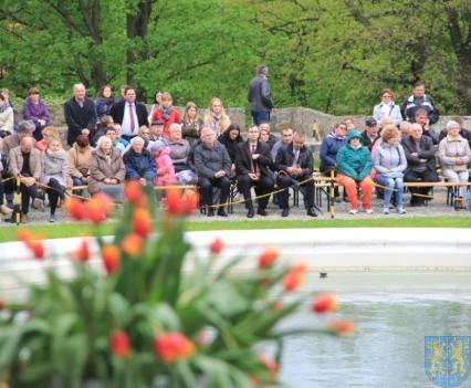 Święto Tulipanów 2017 niedziela (100)
