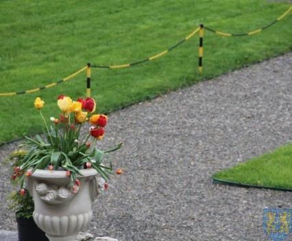 Święto Tulipanów 2017 niedziela (163)