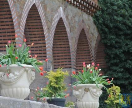 Święto Tulipanów 2017 niedziela (30)