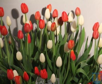 Święto Tulipanów 2017 niedziela (369)