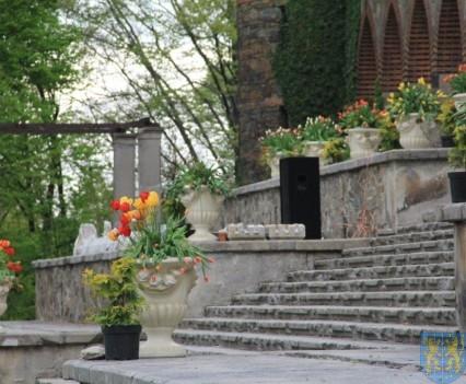Święto Tulipanów 2017 niedziela (97)