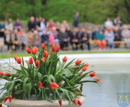 Święto Tulipanów 2017 niedziela (99)