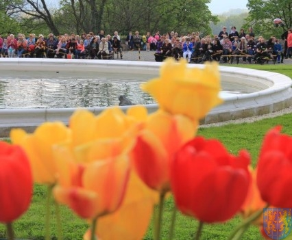 Święto Tulipanów 2017 sobota (144)