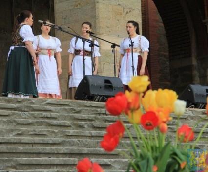 Święto Tulipanów 2017 sobota (146)