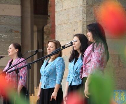 Święto Tulipanów 2017 sobota (164)