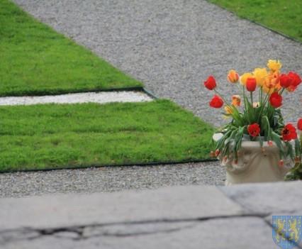 Święto Tulipanów 2017 sobota (167)