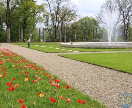 Święto Tulipanów 2017 sobota (23)