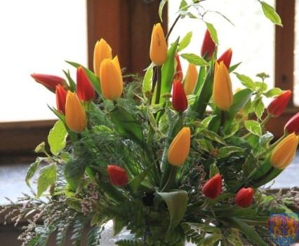 Święto Tulipanów 2017 sobota (62)