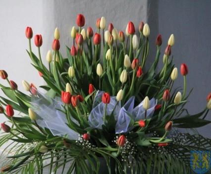Święto Tulipanów 2017 sobota (64)