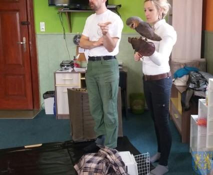 Dzikie zwierzątka z wizytą w  przedszkolu (17)