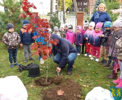 Dzień drzewa wskazuje na przyszłość (1)