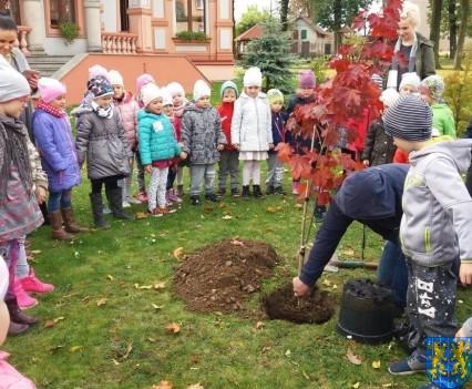 Dzień drzewa wskazuje na przyszłość (10)