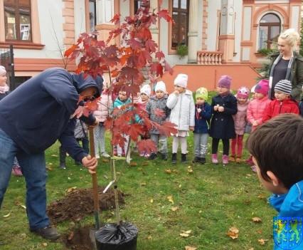 Dzień drzewa wskazuje na przyszłość (9)
