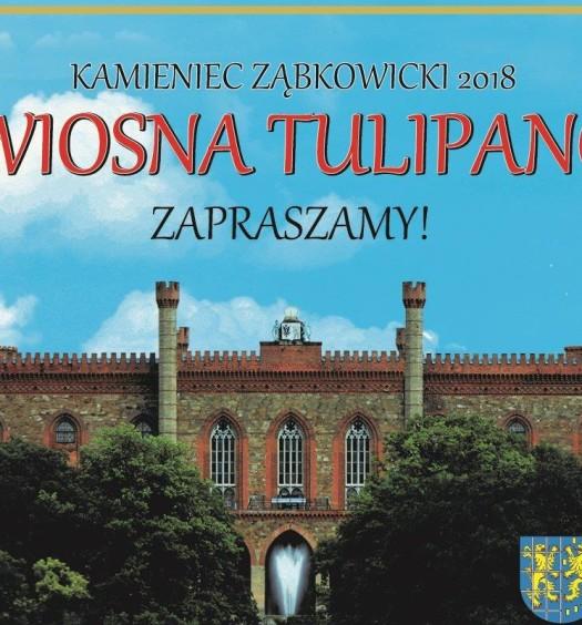 IV Wiosna Tulipanów w Kamieńcu Ząbkowickim_02