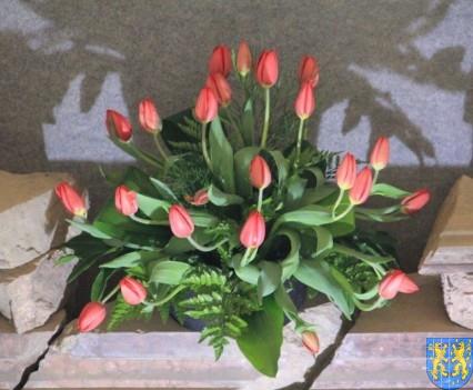 Kamieniecka Wiosna Tulipanów 2018 kronika (123)