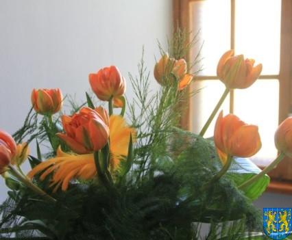 Kamieniecka Wiosna Tulipanów 2018 kronika (188)