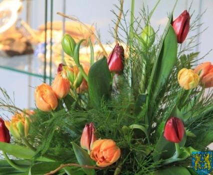 Kamieniecka Wiosna Tulipanów 2018 kronika (207)