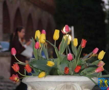 Kamieniecka Wiosna Tulipanów 2018 kronika (534)