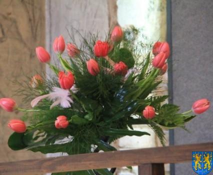 Kamieniecka Wiosna Tulipanów 2018 kronika (91)