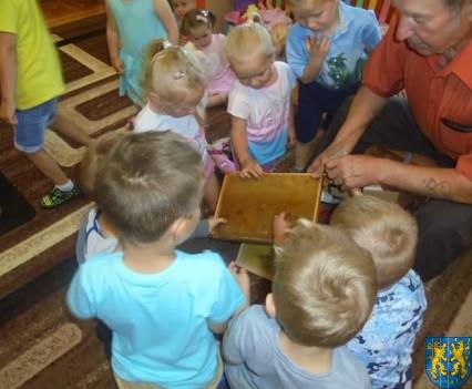 Pszczelarz w Baśniowej Krainie (2)