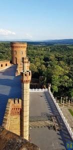 Pałac Marianny Orańskiej rewitalizacja trwa (6)