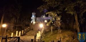 Pałac Marianny Orańskiej widziany nocą (1)