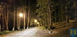 Pałac Marianny Orańskiej widziany nocą (10)
