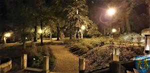 Pałac Marianny Orańskiej widziany nocą (12)